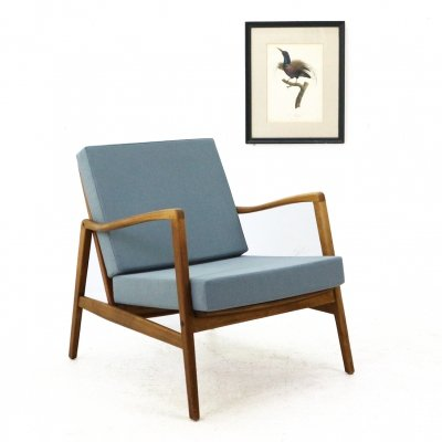 Mid-Century Easy Chair in Dove Blue, 1960s