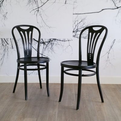 Set of 2 Jugendstil Chairs by ZPM Radomsko, 1960s