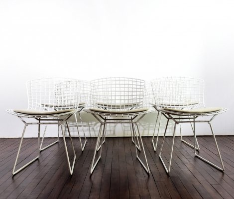 Set of 6 Harry Bertoia side chairs by Knoll International, 1990s