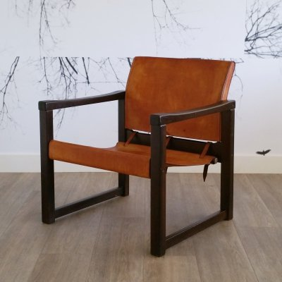 'Diana' Arm Chair by Karin Mobring for Ikea, 1970s