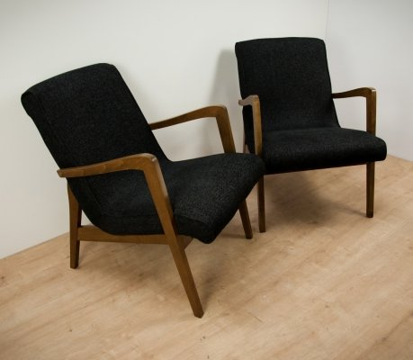 Pair of Type 300-138 Armchairs from Bystrzyckie Furniture Factory, 1960s