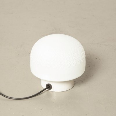 White Opal Glass Shade on White Porcelain base Wall or Ceiling Lamp