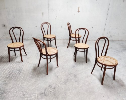 Set of 6 Thonet dining chairs, 1950s