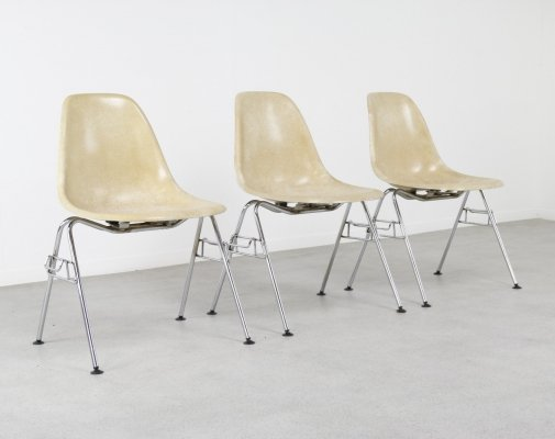 Early fiberglass 'DSS' chairs by Charles & Ray Eames for Herman Miller, 1950s