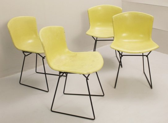 Set of 4 Molded Shell Side Chairs by Harry Bertoia for Knoll, 1960s