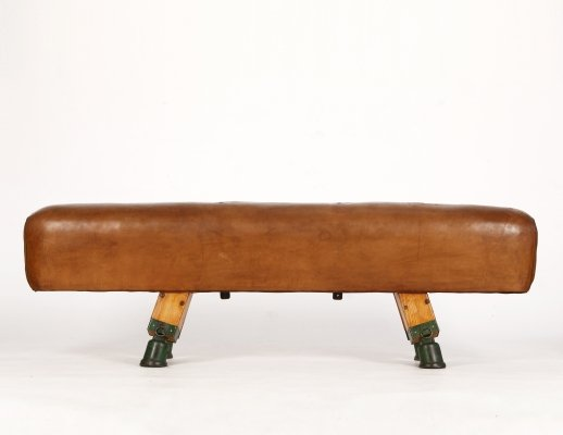 Vintage Industrial Cast Iron & Leather Gymnastics Pommel Horse, 1930s