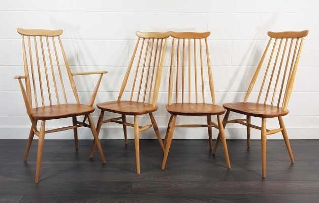 Mid Century Goldsmith Dining Chairs & 1 Carver by Lucian Ercolani for Ercol