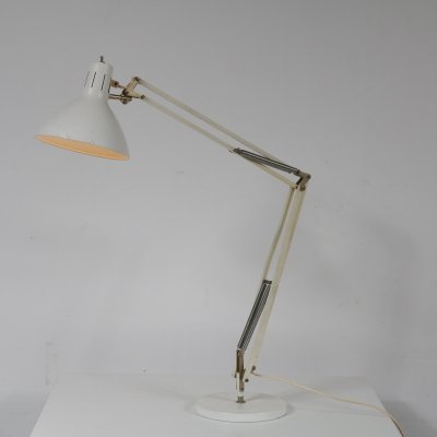 Angle poise desk lamp by Hala, the Netherlands 1950s