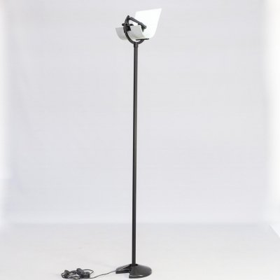 80s Metal & glass tall floorlamp for Prandina