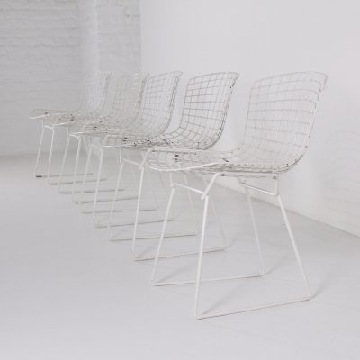Set of 5 White wire chairs by Harry Bertoia for Knoll, 1960s