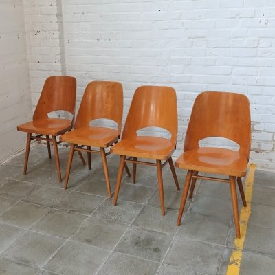Set of 4 Radomir Hofman chairs for TON, 1960's