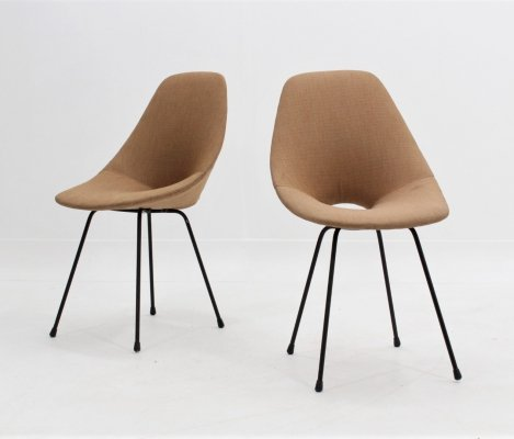 Pair of Medea chairs by Vittorio Nobili for Fratelli Tagliabue, 1950s