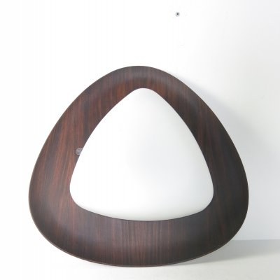 Teak & opaline glass wall lamp by Goffredo Reggiani, 1960s
