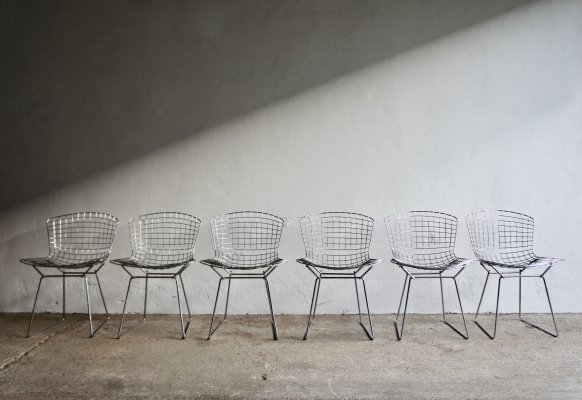 Set of 6 Bertoia Dining Chairs for Knoll
