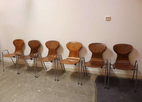 Set of 6 Tubax dining chairs, 1960s