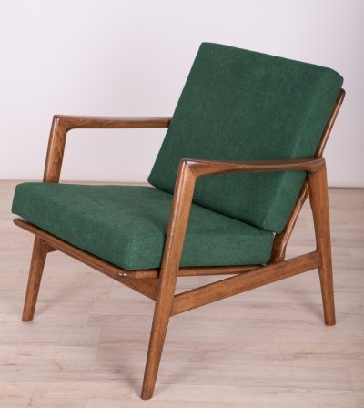 Armchair 300-139 by Swarzędzka Furniture Factory, 1960s