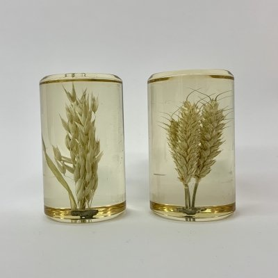 Set of 2 lucite presse papier with wheat inside, 1970's