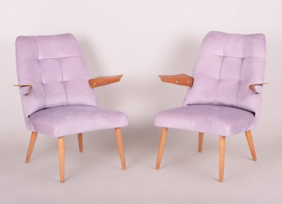 Pair of Pink Czech Mid-Century Oak Armchairs, 1950s