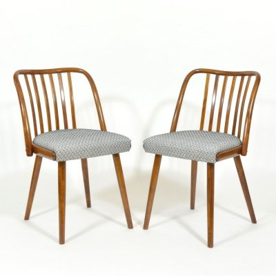 Set of 2 Antonin Šuman chairs by Jitona, 1960s
