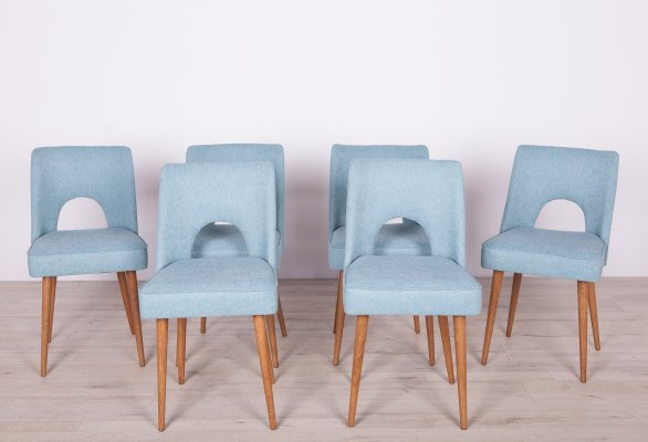 Set of 6 Polish Shell Chairs from Bydgoszcz Furniture Factory, 1960s