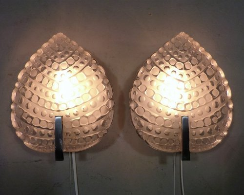 Botanical Glass Wall lamps by Kaiser Leuchten, 1960's