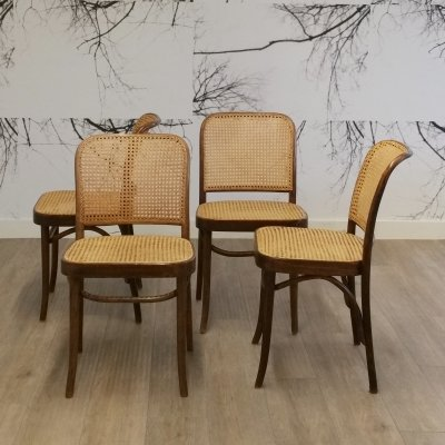 Set of 4 No. 811 or Prague Chairs by Josef Hoffmann for FMG, 1960s