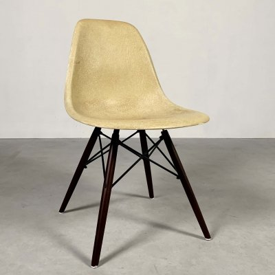 Cream DSW Dining Chair by Charles & Ray Eames for Herman Miller, 1980s