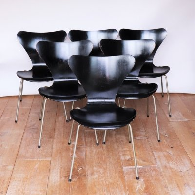 Early Edition Serie 7 Chairs by Arne Jacobsen for Fritz Hansen, 1950s