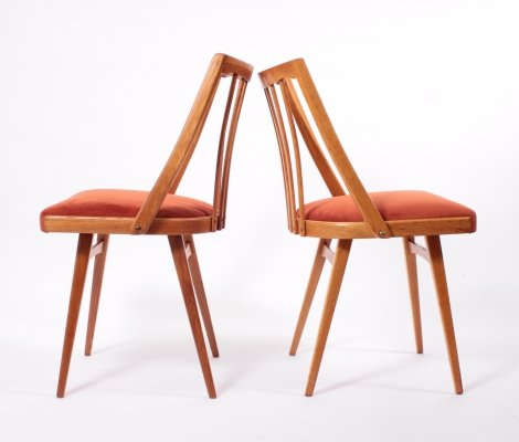 Vintage Dining Chairs by Antonin Šuman