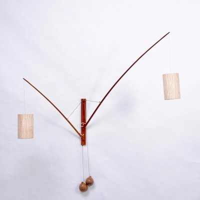 Mid-Century Modern Wall Light with coconut counterweights by Rupprecht Skrip