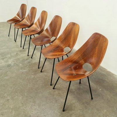 Set of 6 signed Medea chairs by Vittorio Nobili, 1950s