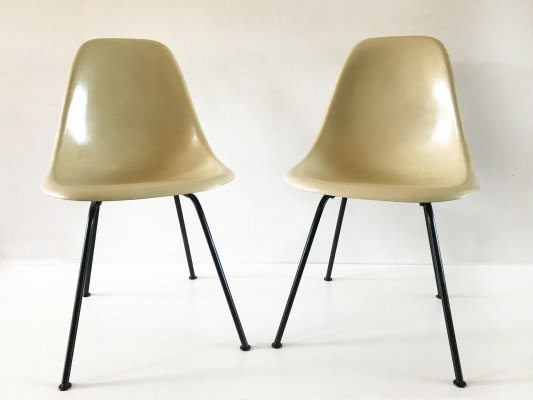 Parchment & black side shells by Eames, 1960's