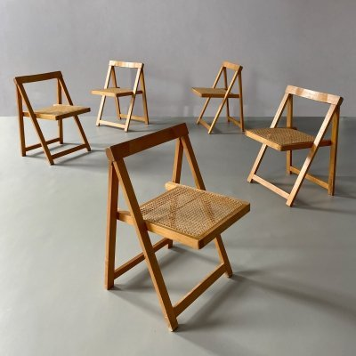 Vintage Cane & Beech Folding Chairs by Aldo Jacober, 1970s