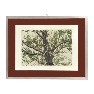 Lithographic print depicting a tree by Giorgio Moiso, 1970s