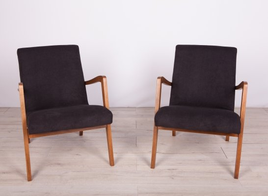 Pair of Type 300-138 Beech Armchairs from Bystrzyckie Furniture Factory, 1960s