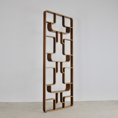 Room Divider by Ludvik Volak for Drevopodnik Holesav, 1950s
