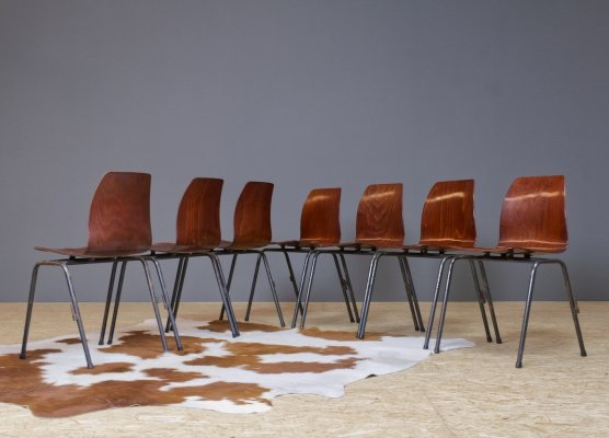 Set of 7 Thur Op & Pagholz school chairs in metal & plywood, 1960s