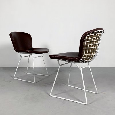 Set of 2 Dining Chairs by Harry Bertoia for Knoll, 1970s
