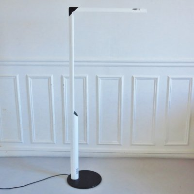 Veronica floor lamp by Gianfranco Frattini for Luci, 1980s