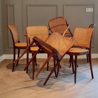 Set of 6 Prague or No. 811 Chairs by Josef Hoffmann for Ligna, 1960s/1970s