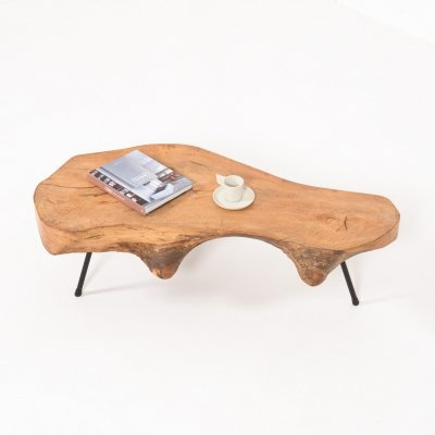 Mid-Century Modern Tree Trunk Coffee Table, 1950s