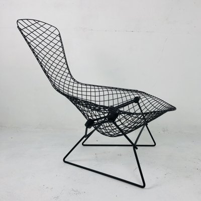 'Bird' Lounge Chair by Harry Bertoia for Knoll International, 1950s