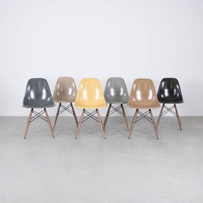 Set of 6 DSW dining chairs by Charles & Ray Eames for Vitra, 1950s