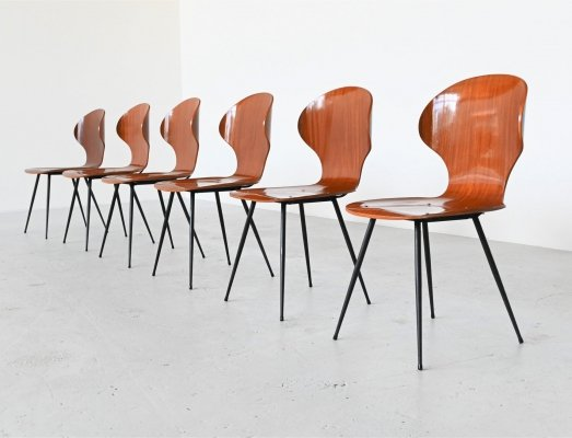 Carlo Ratti plywood teak dining chairs by Lissoni, Italy 1950