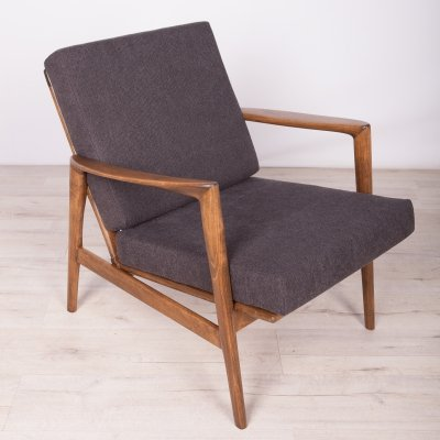Model 300-139 Armchair from Swarzędzka Factory, 1960s