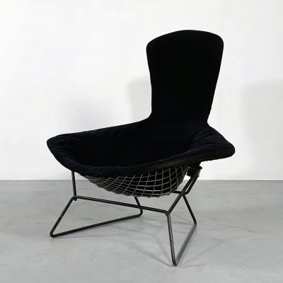 Bird Lounge Chair with Velvet Black Cover by Harry Bertoia for Knoll, 1960s