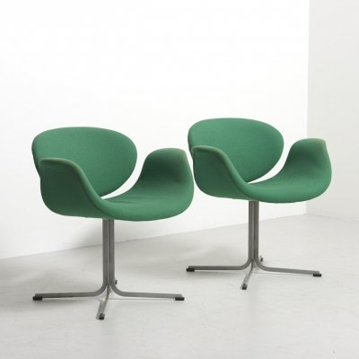 Pair of 'Little Tulip' dining chairs by Pierre Paulin for Artifort, Netherlands
