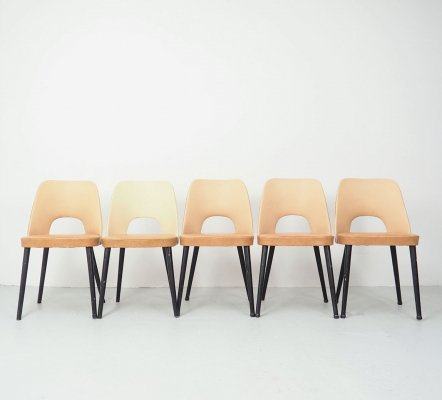 Set of 5 Thonet dining chairs N515 by Oswald Haerdtl, 1950's