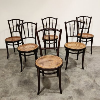 Set of 6 Bentwood Chairs by Thonet, Austria 1920's