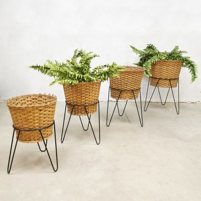 Set of 4 Dutch design vintage rattan / wicker plant stands, 1960s